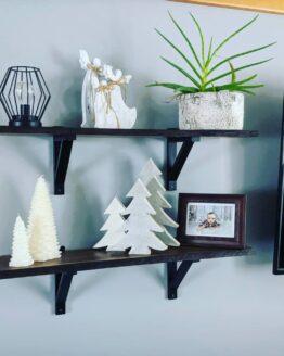 LE Shelf 2